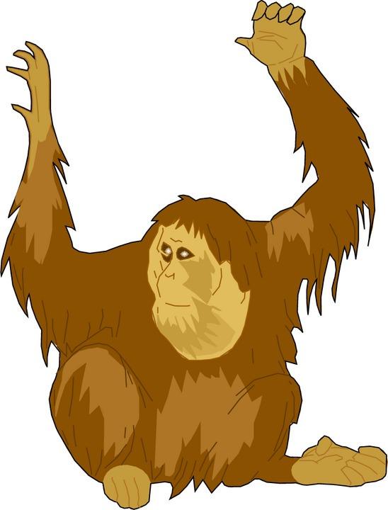 Ape Clip Art--0