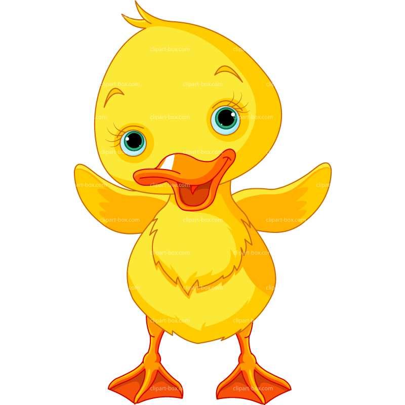 Baby Duck Clip Art