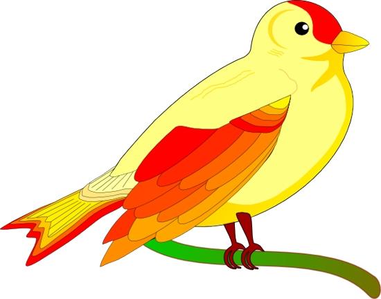 Bird Images Clip Art