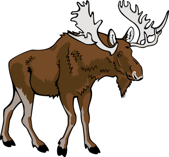Free Moose Clipart--6