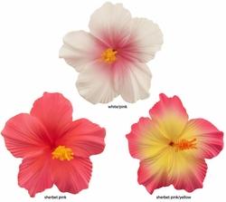 Hawaiian Flower Clips