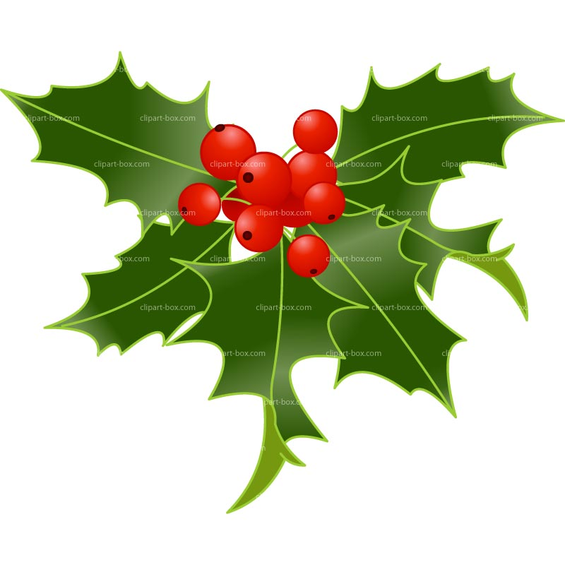 Holly Berry Clipart--0