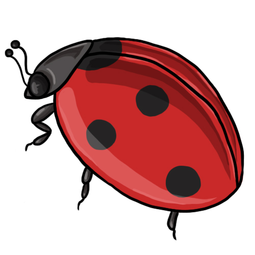 Ladybugs Clipart--17