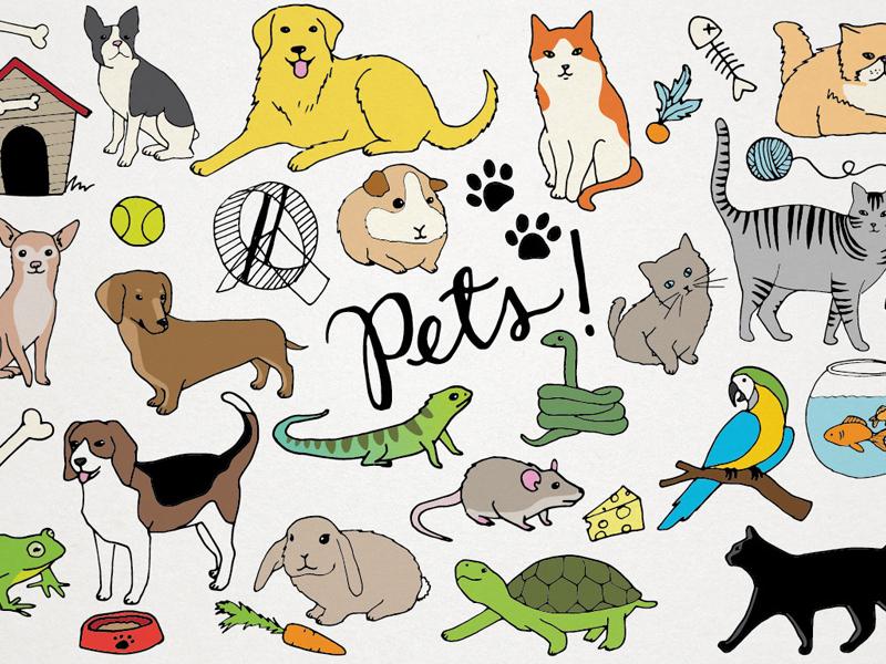 - Pets Clipart