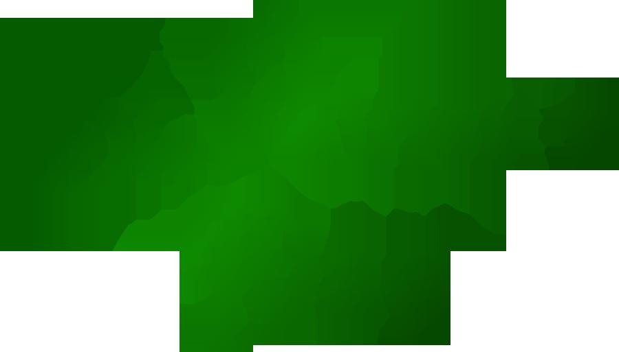 St Patrics Day--6