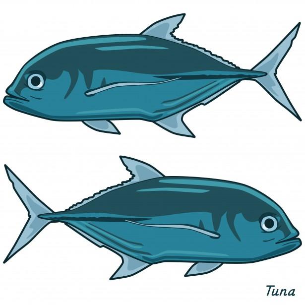- Tuna Clip Art