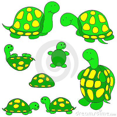 - Turtles Clipart