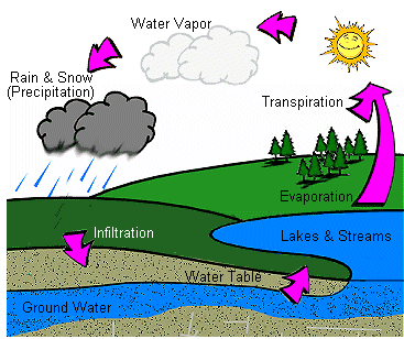 - Water Cycle Clipart