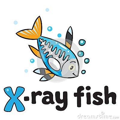 X Ray Fish Clipart