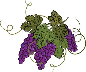 Grape Vine Clip Art