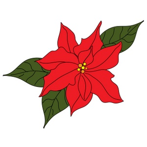 10  images about Poinsettia o - Poinsetta Clip Art