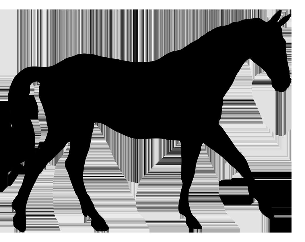 Horse Silhouette Clip Art