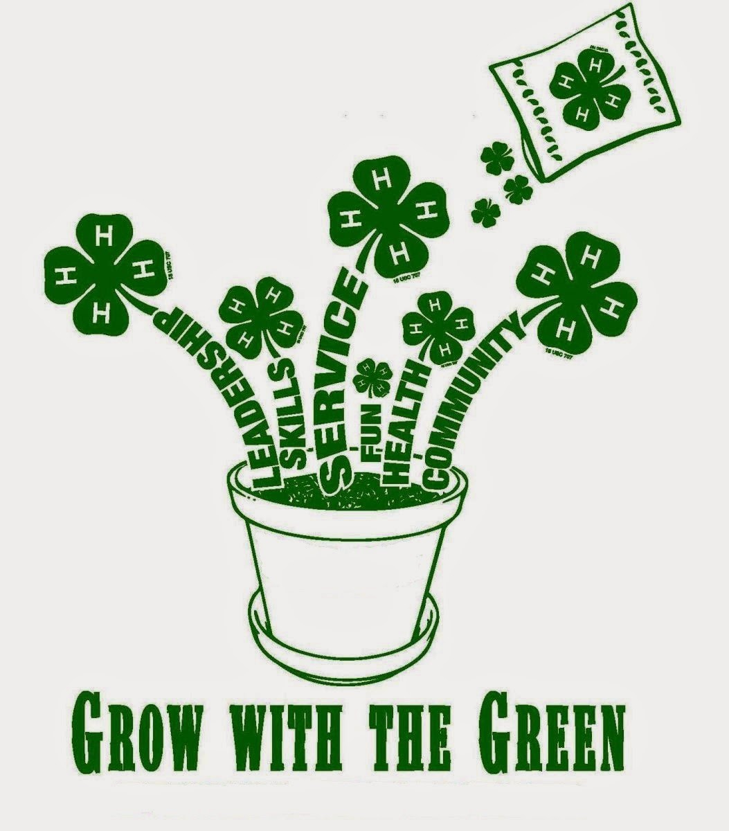 1000  images about 4-H Graphi - 4 H Clipart