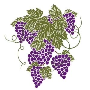 1000  Images About Grape Art On Pinteres-1000  images about Grape Art on Pinterest | Vineyard, Clip art and Green grapes-1