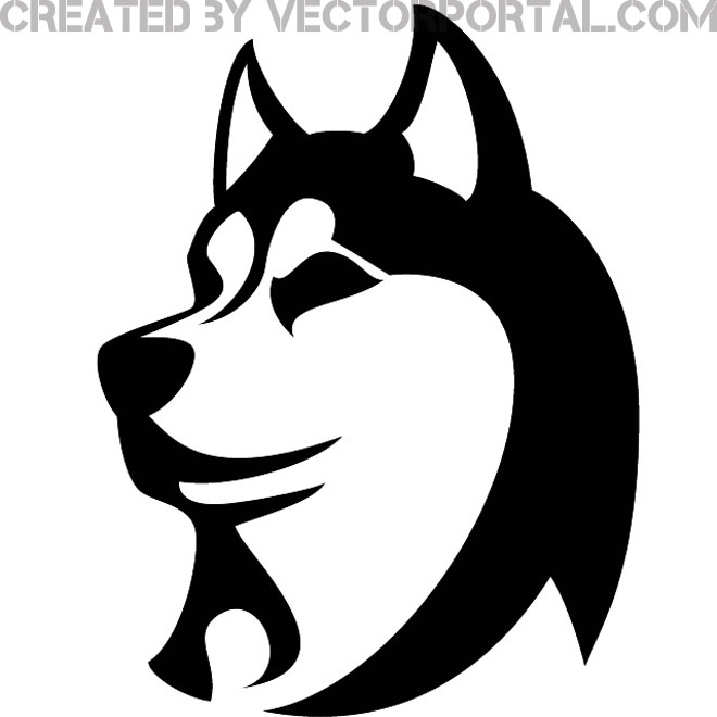 1000 images about husky ideas .