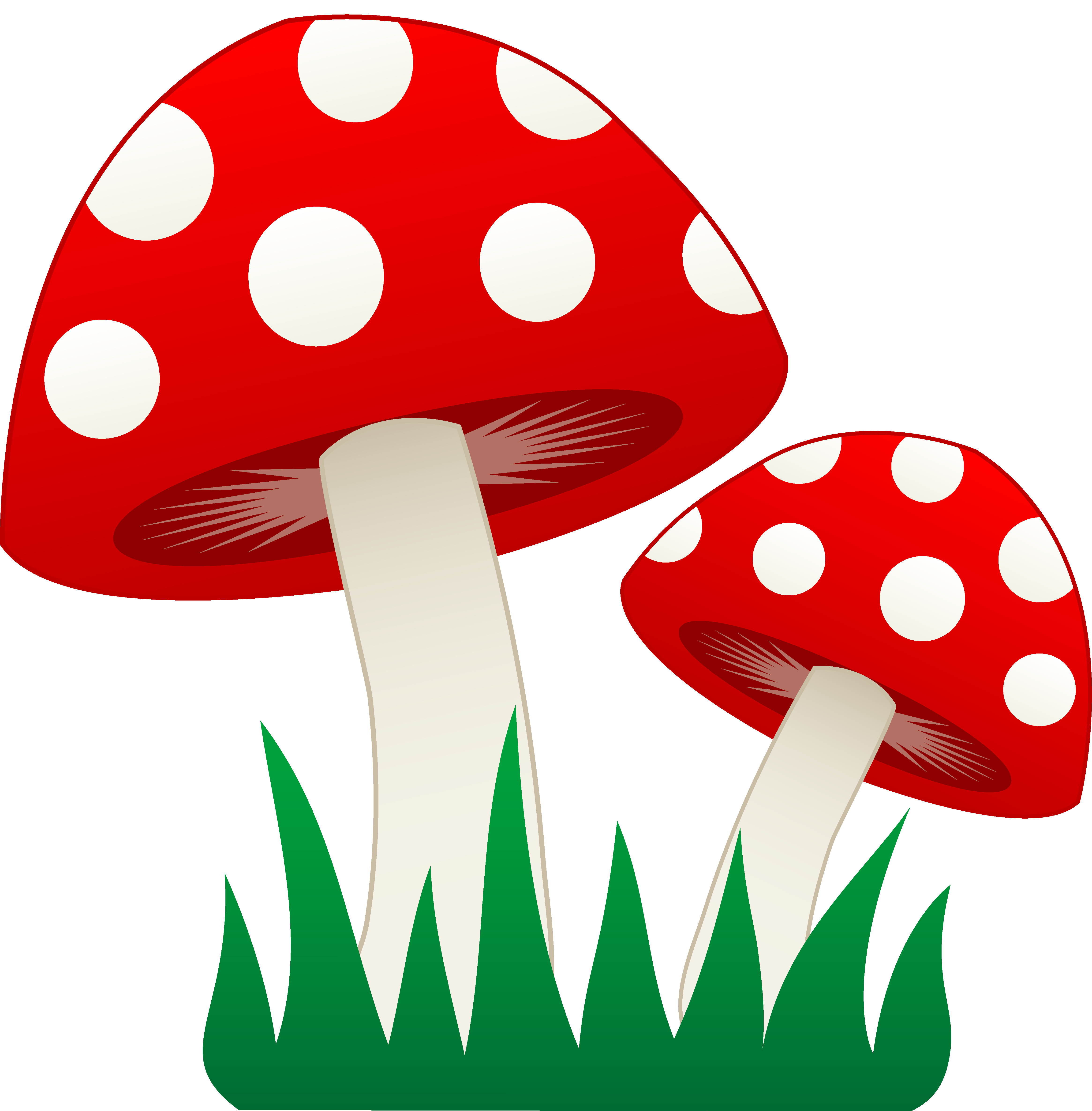 1000  images about Mushrooms on Pinterest | Clip art, Snails and Vector design