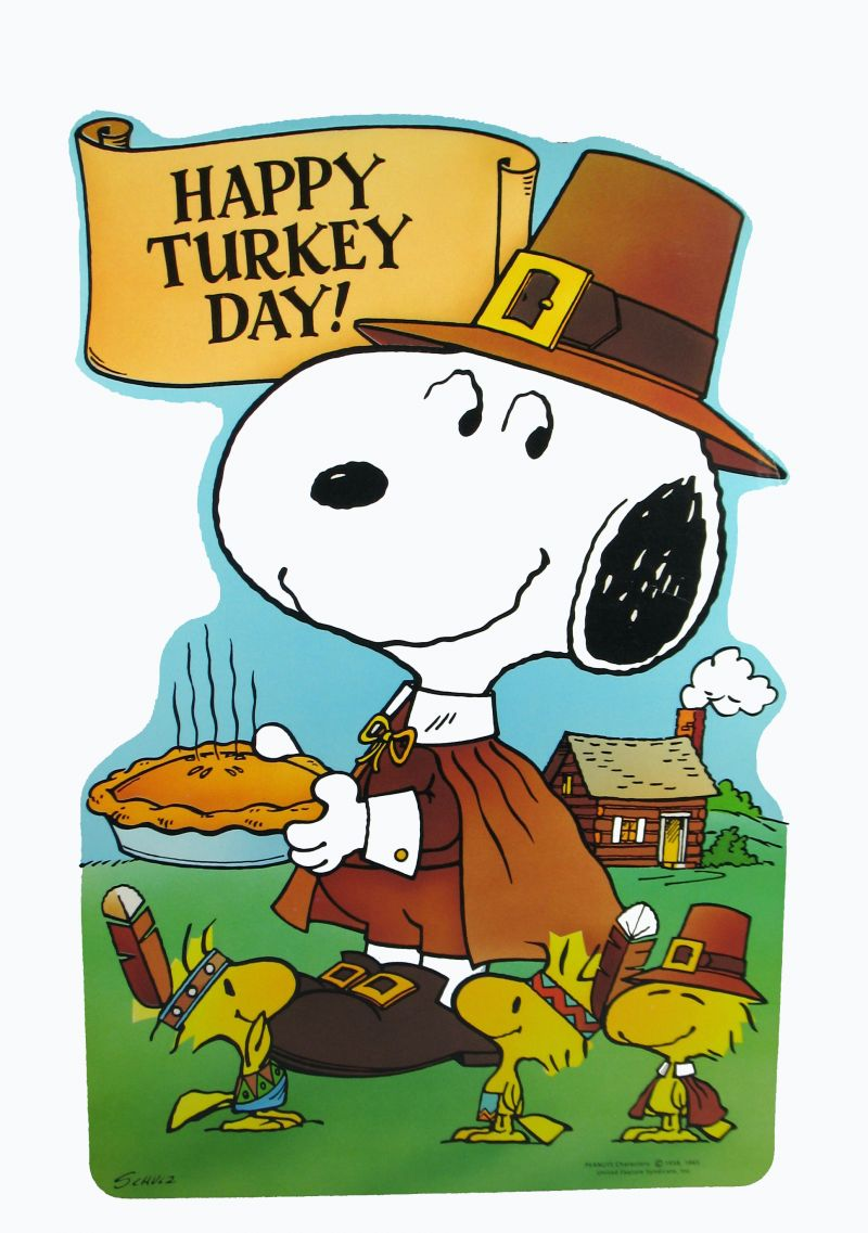 1000  images about Thanksgiving on Pinterest | Peanuts snoopy, Thanksgiving and Woodstock
