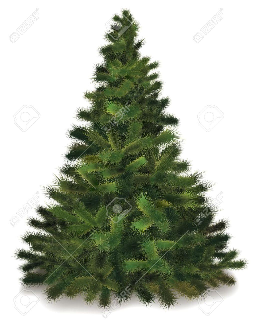 11341334-Christmas-tree- .