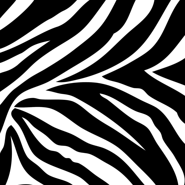 1500x1500px : Zebra Background HD Backgr-1500x1500px : Zebra Background HD Background - Digntaswpp-10
