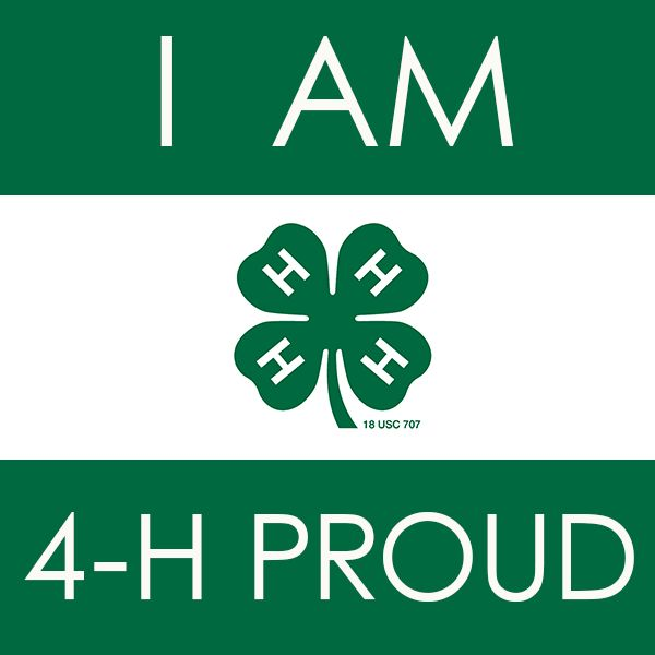 Image result for 4h clipart