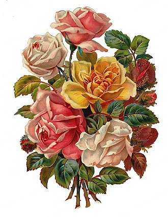 17  images about vintage flowers- FMP pa-17  images about vintage flowers- FMP paris on Pinterest | Yellow roses, Clip art and Pansies-16