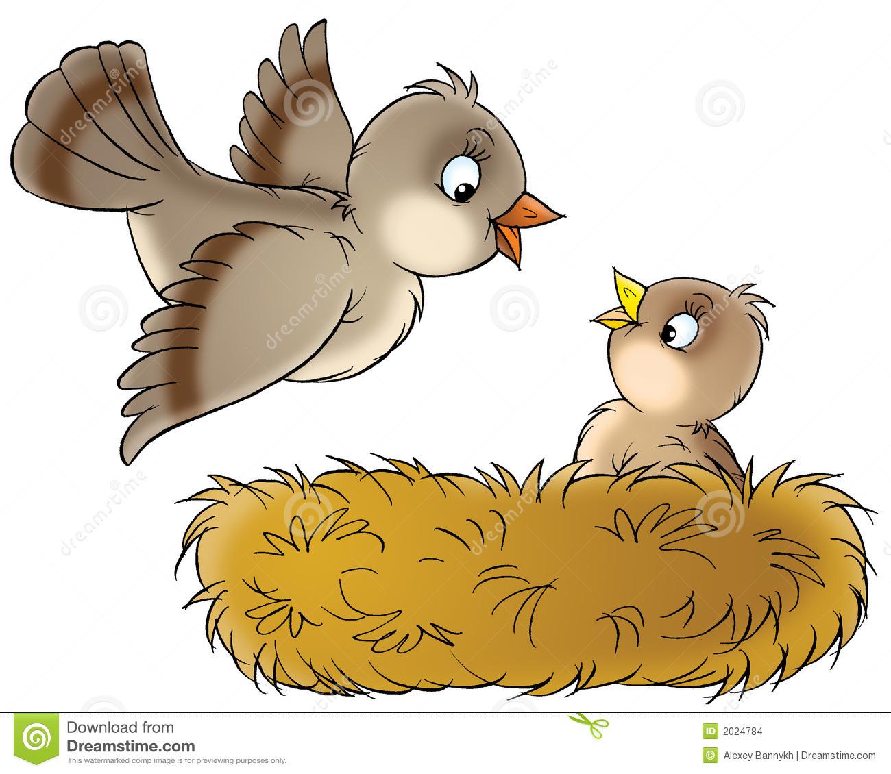 310785b5101103de3513163a11bb80 ... 310785b5101103de3513163a11bb80 ... Bird And Nest Clipart Etc