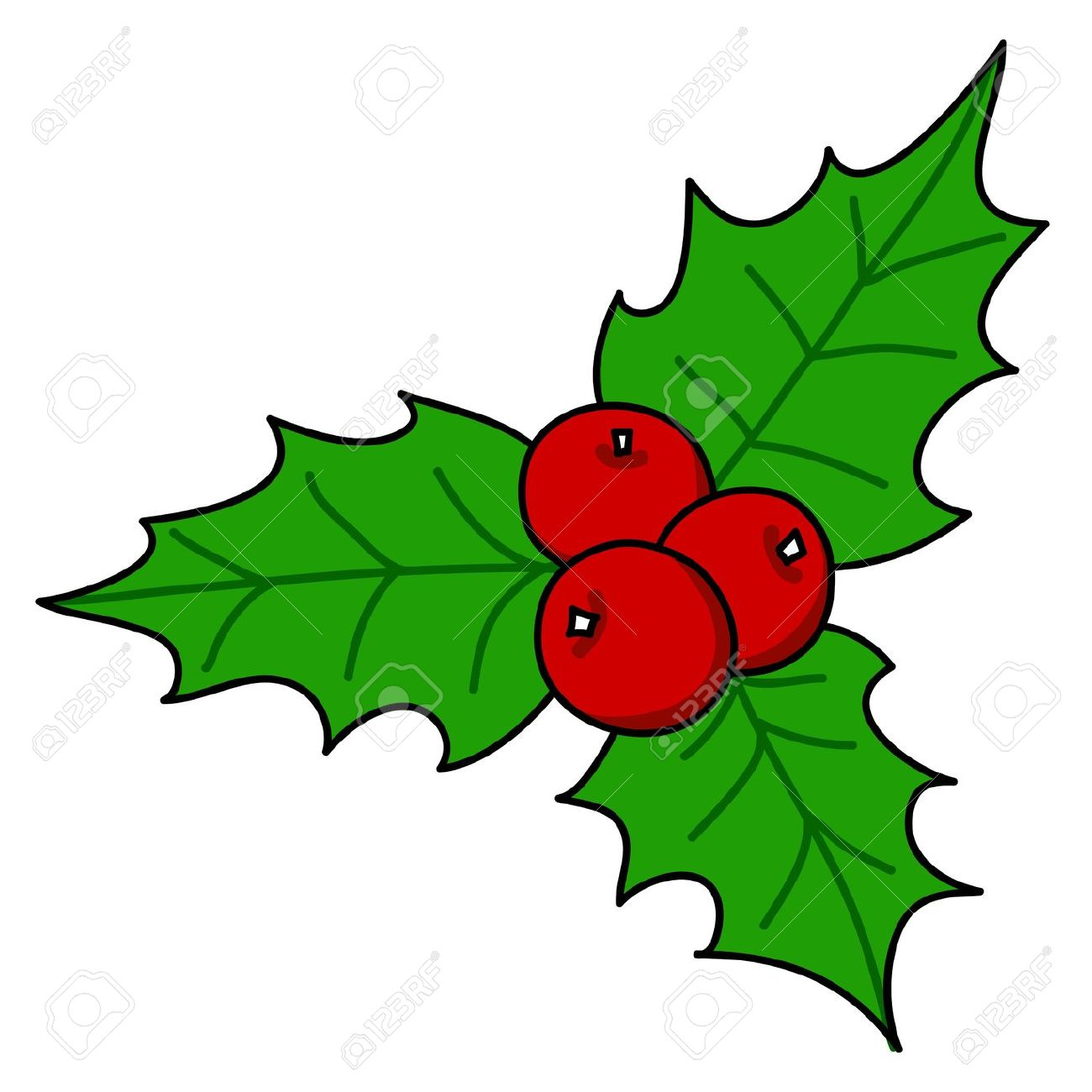 49 holly leaves and berries clip art