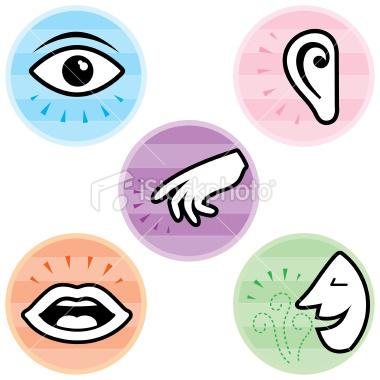 5 Senses Clipart-5 senses clipart-3