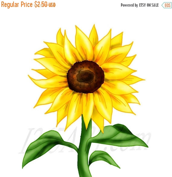 50% OFF Sale Beautiful Sunflower Clipart-50% OFF Sale Beautiful Sunflower Clipart, Sunflower clip art, Flower clipart, Scrapbooking, Embellishments, Party Invitations, Illustration,-1