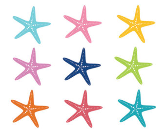 Star Fish Clipart