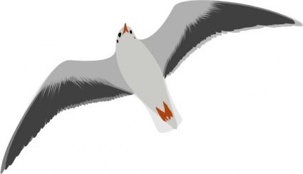 78  images about A Gull Takes to the Wind on Pinterest | Clip art, Wings and The wave