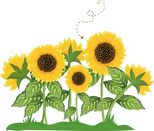 Clip Art Sunflower