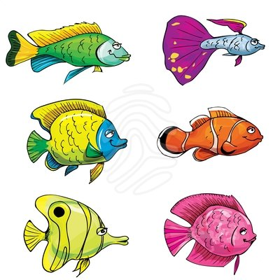 78  images about tropici fish on Pinterest   Colorful fish, Search and Clip art