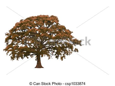 ... Abstract Oak Tree - Abstract illustration of an oak tree in.
