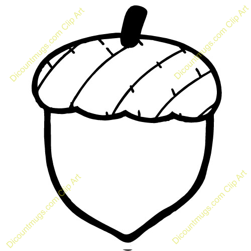acorn clipart-acorn clipart-15