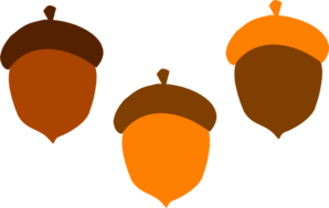Acorns Clip Art