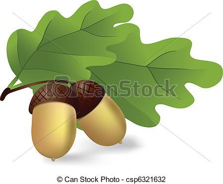 acorns - csp6321632