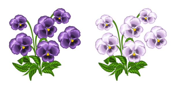 African Violet Clip Art-African Violet Clip Art-15