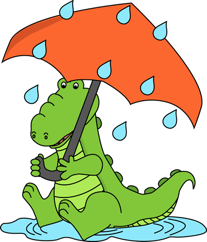 Alligator Sitting in the Rain