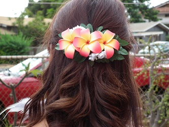 Aloha And Welcome To Hawaiiu0027s Best O-Aloha and Welcome to Hawaiiu0027s best of the best Hawaiian flower hair  accessories. Weu0027re proud to introduce our exclusive line of flower hair  clips, picks, ...-2