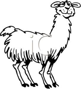 Alpaca Clipart -alpaca clipart -3
