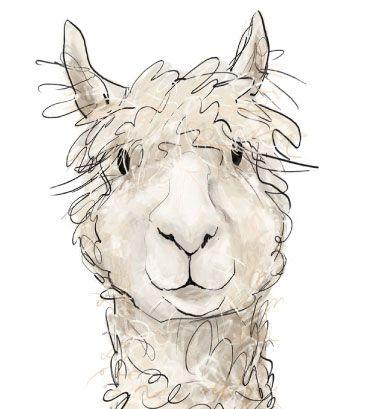 Alpaca Clipart -alpaca clipart -4