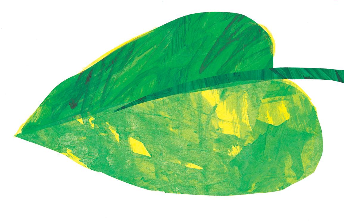 Very Hungry Caterpillar Clip Art