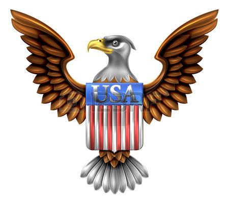 american eagle: American Eagle Design with bald eagle of the United States with American flag