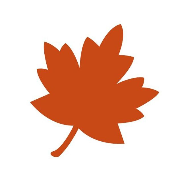 An orange maple leaf.