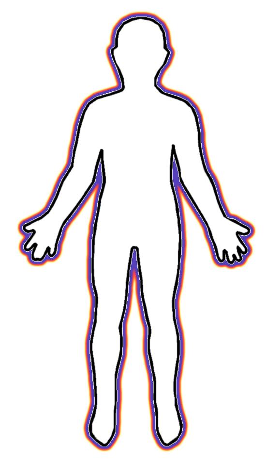 Anatomy Anatomy Organs Picture Part 236