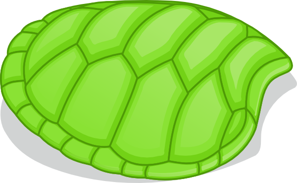 and White Turtle Shell. Download this image as: