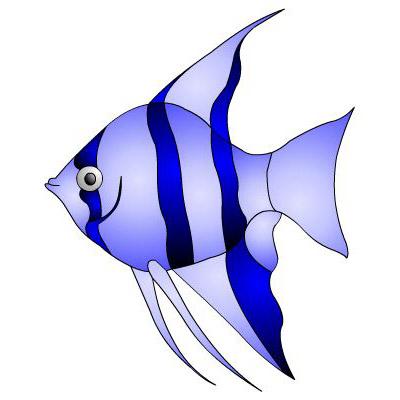angel fish clipart-angel fish clipart-1