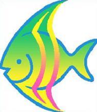 Angel Fish-Angel Fish-16