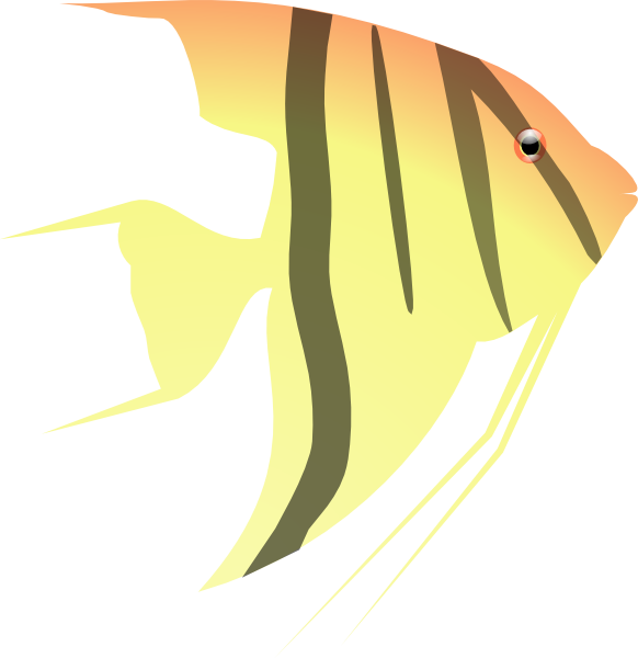 Angel Fish Clip Art-Angel Fish Clip Art-7